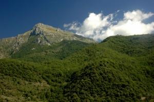 Anello Toraggio-Pietravecchia