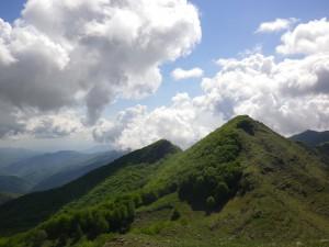 Bosco di Rezzo-Monte Monega