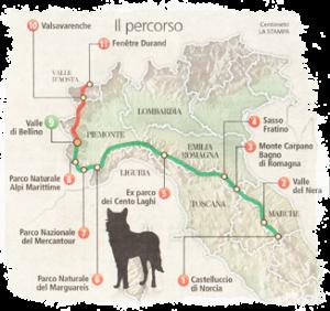 Il-percorso-del-lupo