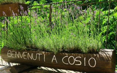 30 luglio – Paella e Sangria in Piazza