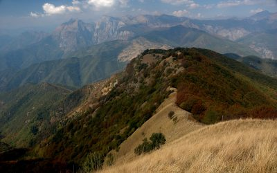 Nuove strategie di sviluppo per il Parco Alpi Liguri