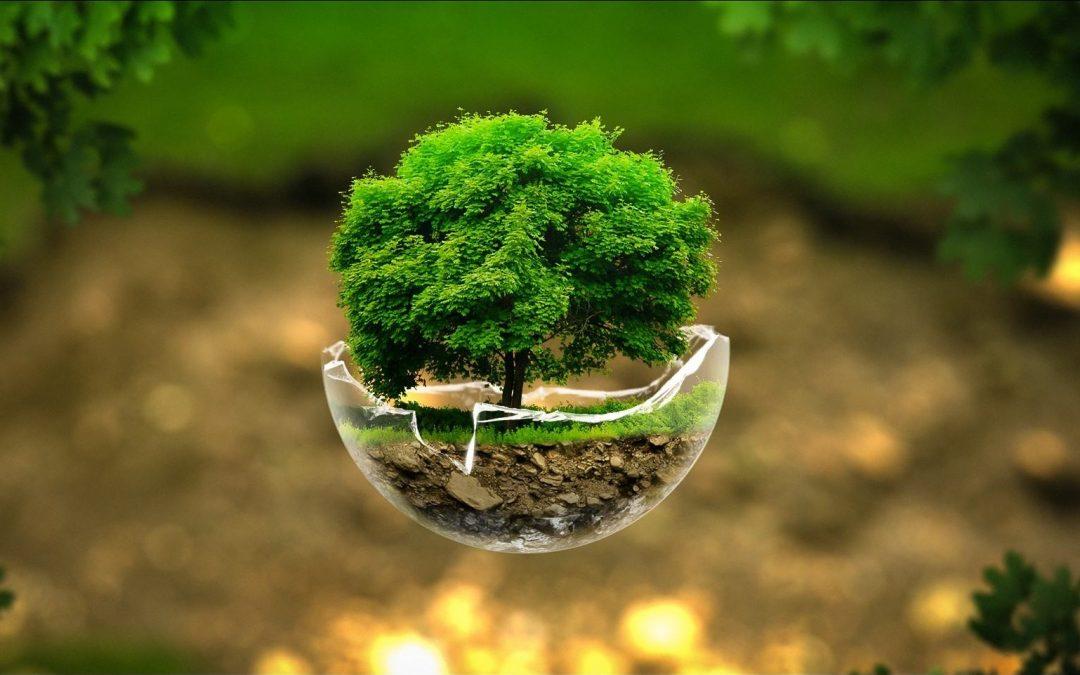 22 aprile – Giornata Mondiale della Terra