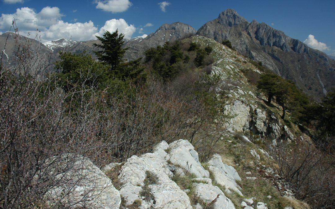 Il risveglio di Primavera nelle Alpi Liguri