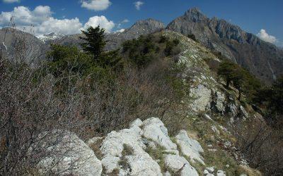 Festa di Primavera nelle Alpi Liguri – Successo dell'inaugurazione