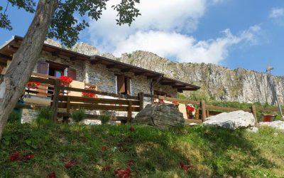 Altrove – Trekking yoga e Festival delle Alpi