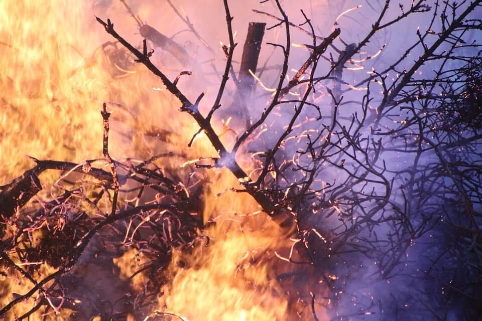 AVVISO – Stato grave pericolosità incendi boschivi