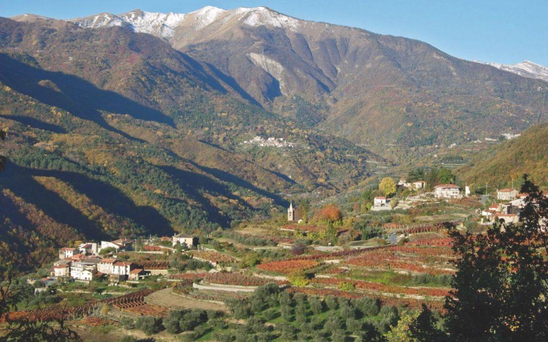 """11 novembre – Escursione """"Vigneto e vino"""""""