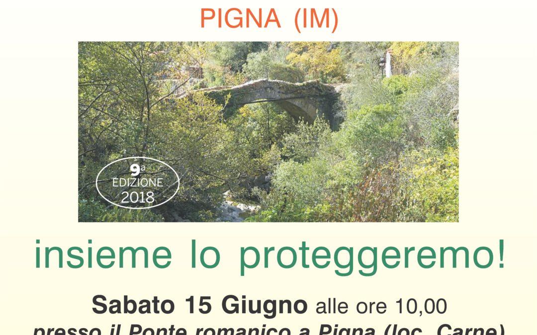 15 giugno  – Il ponte romanico sul Rio Carne