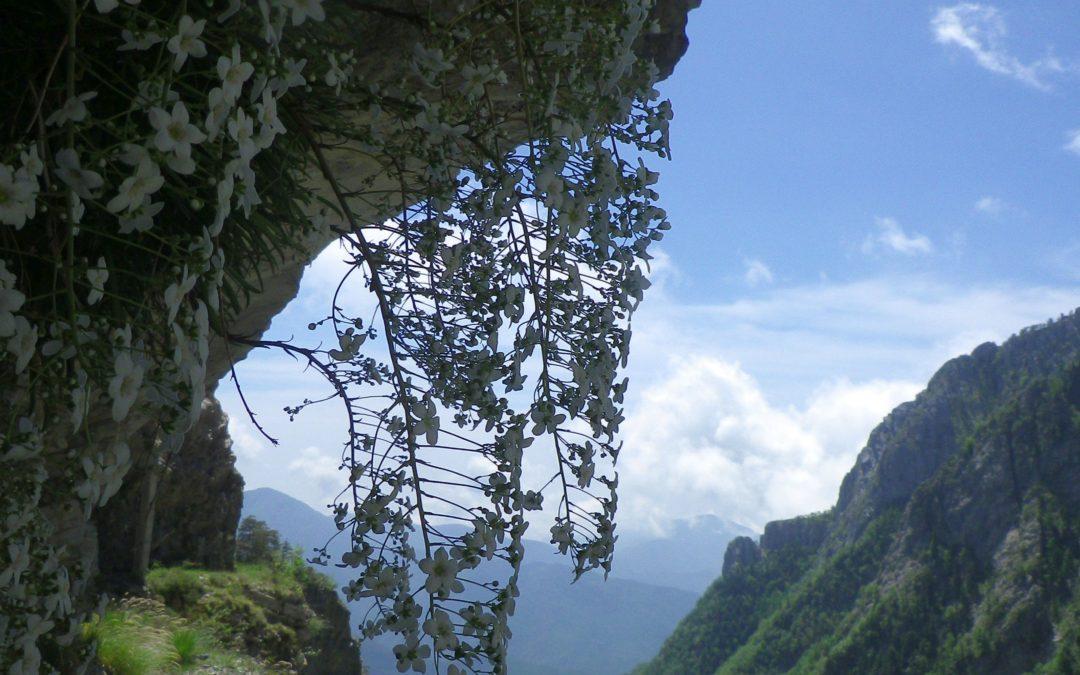23 giugno – Escursione sul Sentiero degli Alpini
