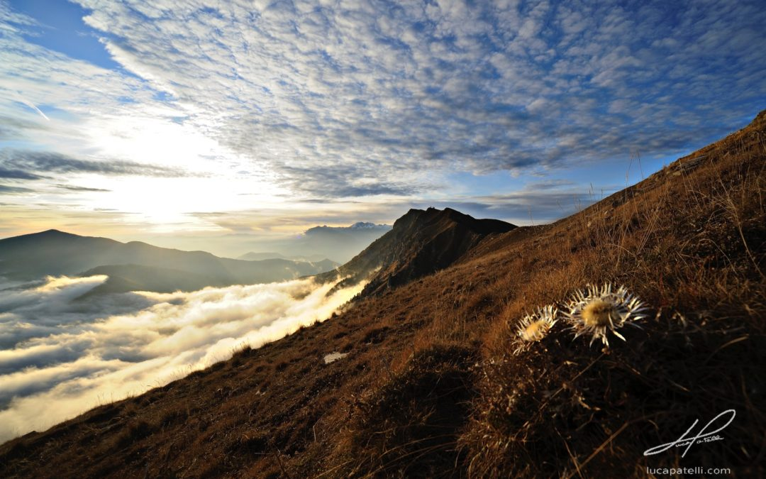 Alpi Liguri primo Parco regionale con bollino blu su Instagram