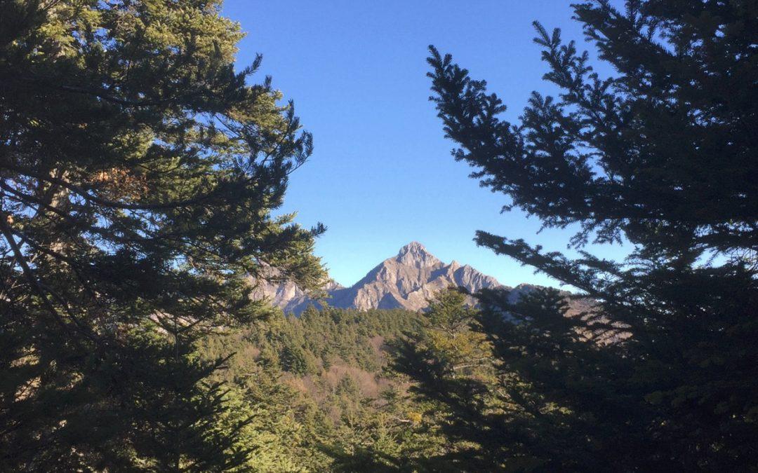 24-25 agosto – Escursioni nella Foresta di Gouta
