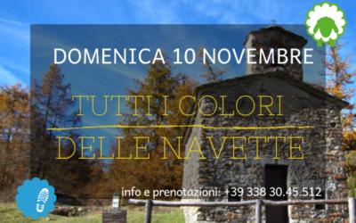10 novembre – Tutti i colori delle Navette