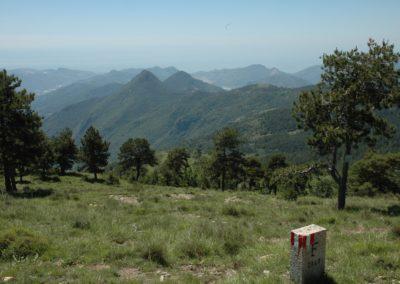 ZPS Testa d'Alpe-Alto (Foto L. Laura)