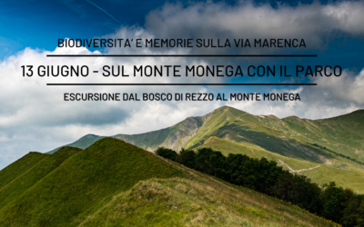 """13 giugno – Escursione """"In Cammino nei Parchi"""" con il Parco Alpi Liguri"""